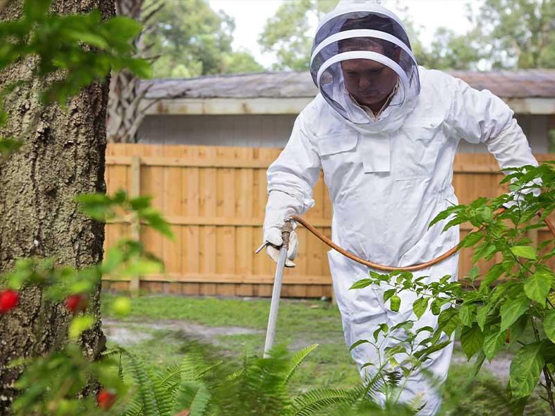 Organic Pest Management